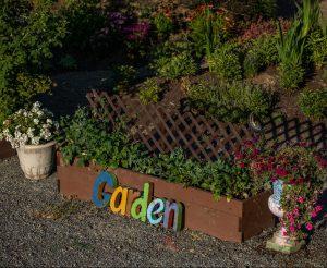 Zen Den Garden
